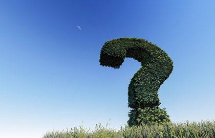 אחסון אתרים בודד או ריסיילר מה כדאי?